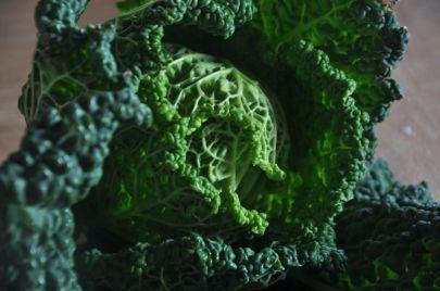 Verza per la ricetta dei cazzarielli e fagioli
