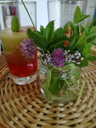 centrifuga di kiwi, fragola e mela con vasetto di erbe aromatiche per decorazione