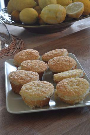 muffin settevasetti