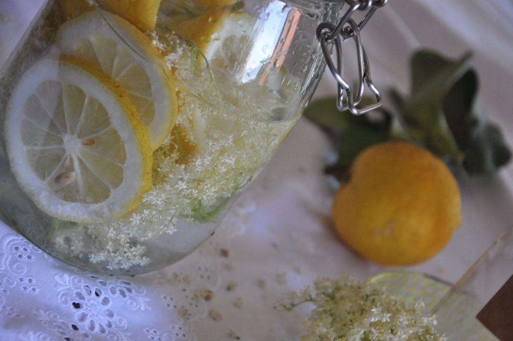 Vaso con fiori di sambuco e limoni a fette