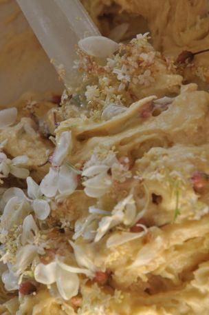 Impasto plumcake con fiori di sambuco e d'acacia
