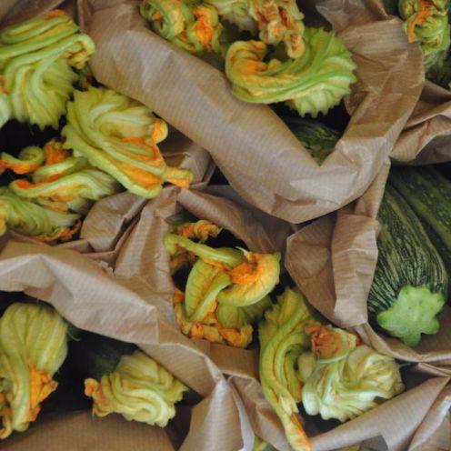 Zucchine di Agrilab