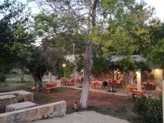 Masseria nonno Tore Tricase. I tavoli disposti sotto gli alberi.