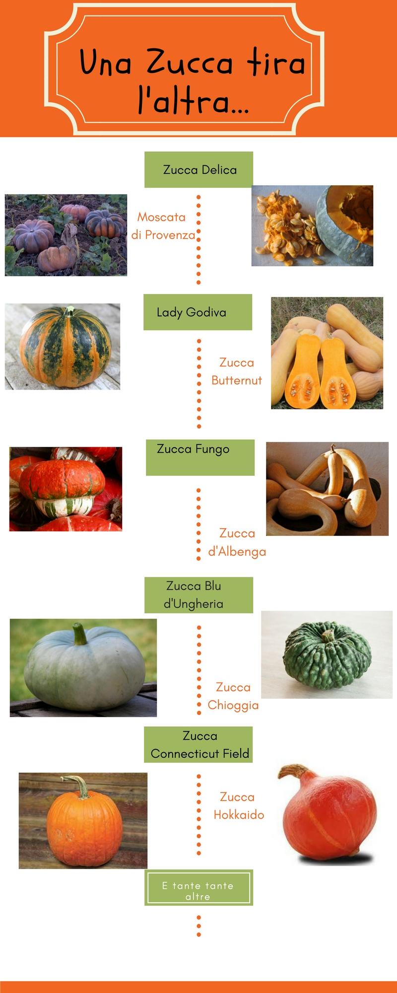 Alcune varietà di zucca