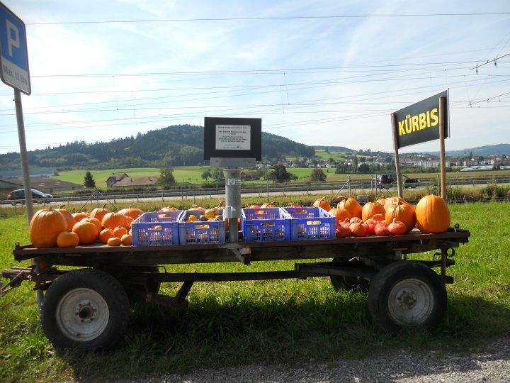 Carretto di zucche in vendita in una campagna Svizzera