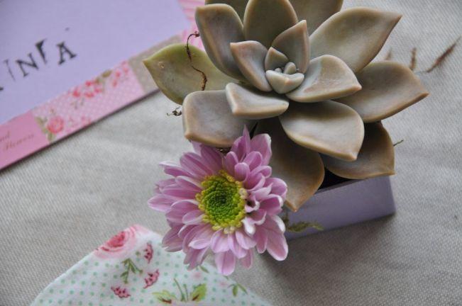 Decorazione floreale con succulenta e piccola margherita viola