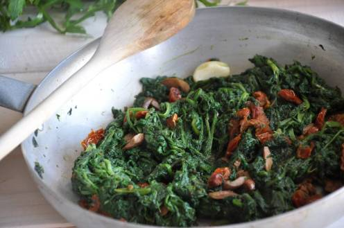Rosola, rosolaccio, pianta papavero